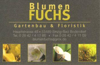 blumen_fuchs_500